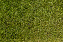 Soccer pitch Royalty Free Stock Photos