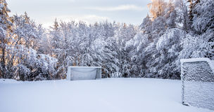 Soccer pitch in Winter. With a forest around it Royalty Free Stock Image
