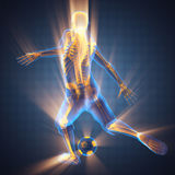 Soccer player bones radiography. 3D rendered Royalty Free Stock Image