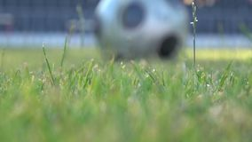 A soccer player hits the ball during a match on the football field. stock footage