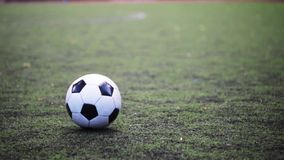Soccer player playing with ball on field stock video footage