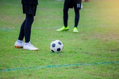 Soccer player standing with ball on green grass. Soccer player training for football match royalty free stock photos