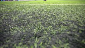 Soccer players on the field view  Royalty Free Stock Photography