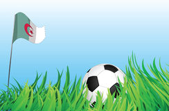 Soccer playground, algeria. An illustrations of soccer ball, with a algeria flag waving at the background Royalty Free Stock Image