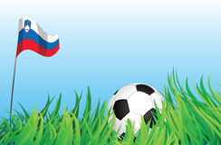 Soccer playground, slovenia. An illustrations of soccer ball, with a slovenia flag waving at the background Royalty Free Stock Photos