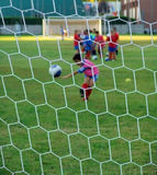 Soccer practice. Young children during soccer practice.Focus on the net stock photography