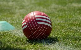 Soccer red ball on the green grass Stock Photos