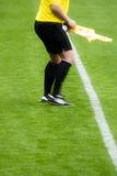 Soccer referee Royalty Free Stock Photo
