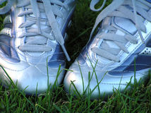 Soccer shoes Stock Image