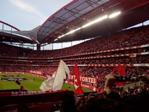 Soccer Stadium, Benfica Football Arena, Real Fans Crowd, Estadio da Luz, Lisbon. Benficas stadium its Portugal largest. Light Stadium or Estadio da Luz, Football royalty free stock photo
