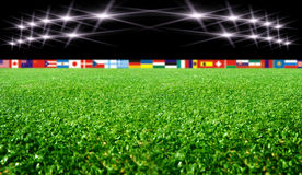 Soccer stadium with flags and lights Royalty Free Stock Photos