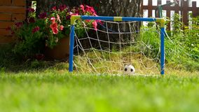 Soccer toy ball at lawn. Soccer toy ball at goal net, countryard, slow motion stock footage