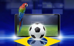 Soccer video game, brazil parrot Royalty Free Stock Photography