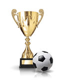 Soccer winner Stock Photography