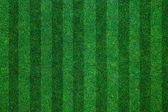 Soccerball领域绿草背景 平的位置 免版税库存图片