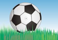 Soccerball en hierba verde fresca bajo el cielo azul Imagenes de archivo