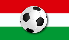 Soccerball with Flag. Flag with Soccer Ball in the Front. Vector royalty free illustration