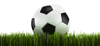 Soccerball in grass Royalty Free Stock Photos