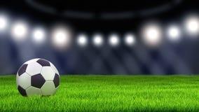 Soccerball op Gras vector illustratie
