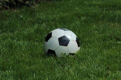 Soccerball på gräs Royaltyfri Bild