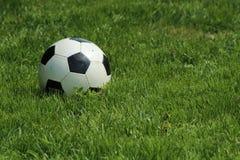 Soccerball på gräs Royaltyfria Foton