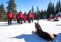 Soccorritori di servizio di salvataggio della montagna Fotografia Stock Libera da Diritti