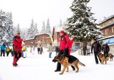 Soccorritori di servizio di salvataggio della montagna con i cani di salvataggio Fotografie Stock Libere da Diritti