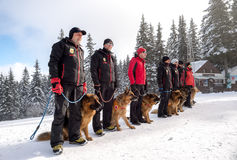 Soccorritori di servizio di salvataggio della montagna con i cani di salvataggio Immagini Stock Libere da Diritti