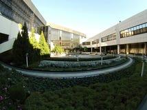 Sochi. Aeroport garden. Blie sky. Go pro hero 3. Silver. Fish eye Stock Image