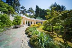 Sochi Arboretum (Dendrarium) Stock Photos