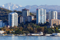 Sochi deptak miasto Obrazy Stock