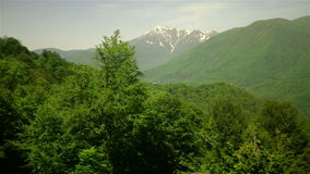 Sochi Mountains covered by green pine tree forests stock video