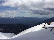 Sochi, pico de rosa imagens de stock royalty free