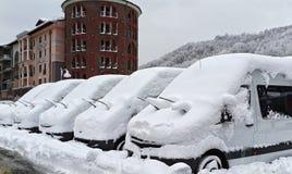 Sochi, Rússia - 14 de janeiro de 2014: Fileira dos minibus brancos novos de Mercedes colados cobertos com a neve no resort de mon imagem de stock