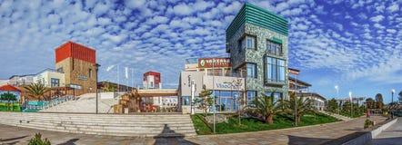 SOCHI ROSJA, LISTOPAD, - 3, 2016: Adler Bulwar Seagull plaża zdjęcia stock