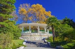 SOCHI RYSSLAND - OKTOBER 17, 2015: Arboretum - observationsgazebo Royaltyfria Bilder