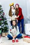 Société de trois filles de chatte près de l'arbre de Noël dans un petit morceau Photographie stock libre de droits