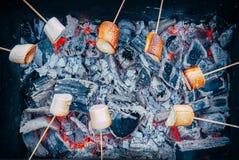 Société des amis par le feu de camp faisant les guimauves frites Image stock