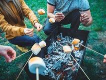 Société des amis par le feu de camp faisant les guimauves frites Photographie stock