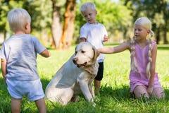 Société des enfants jouant avec un chien en parc images stock