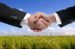 Soci dell'uomo d'affari che agitano le mani in natura Fotografia Stock Libera da Diritti