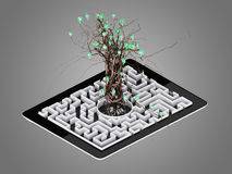 Social media icons set in tree shape on Maze in the tablet. Concept Stock Images