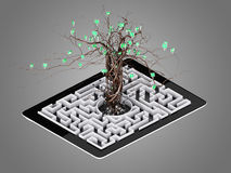 Social media icons set in tree shape on Maze in the tablet. Stock Photography