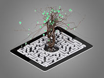 Social media icons set in tree shape on Maze in the tablet. Concept Stock Photo