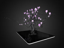 Social media icons set in tree shape on Modern black tablet pc. Royalty Free Stock Photo