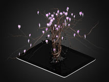 Social media icons set in tree shape on Modern black tablet pc. Royalty Free Stock Images