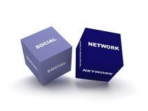 Social network blocks. Two blocks spelling social network term on isolated white background Stock Photos