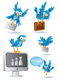 Social Network Bluebird Stock Photography