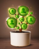 Social network tree coming out of flowerpot Stock Image