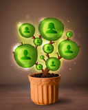 Social network tree coming out of flowerpot. Shining social network tree coming out of flowerpot stock photo